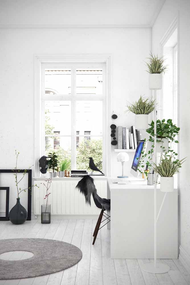 In the white environment, the desk barely appears, it is the plants that reveal its existence there