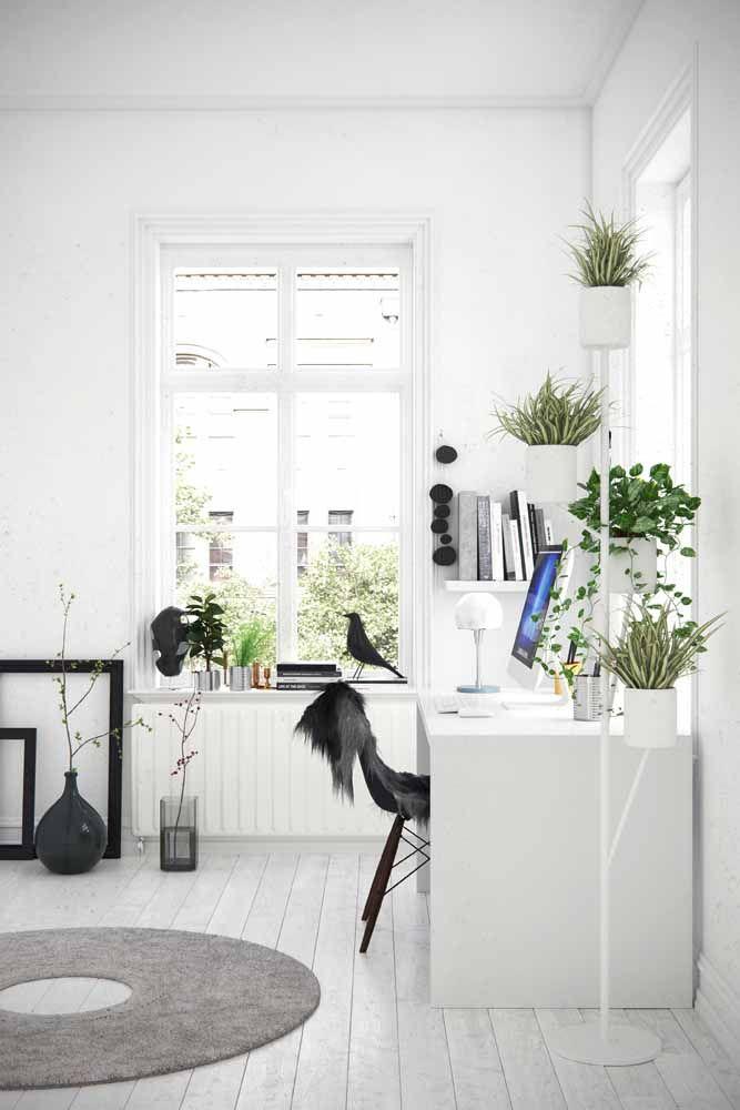 Plants, many plants!