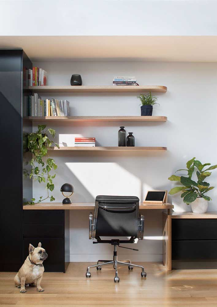Plants to decorate and brighten the home office