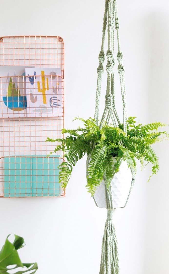 Vaso de samambaia com suporte na parede