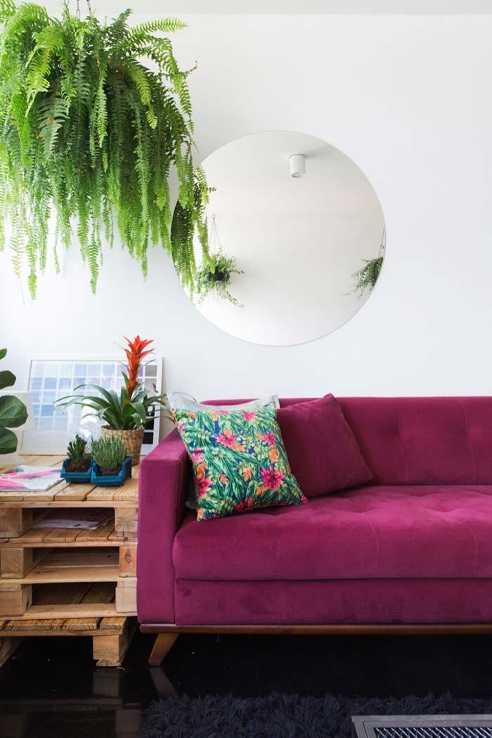 Samambaia para contrastar com o pink do sofá
