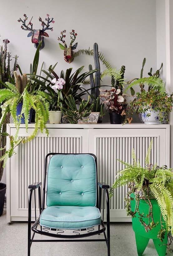 Os amantes de plantas não podem ficar sem um vasinho de samambaia