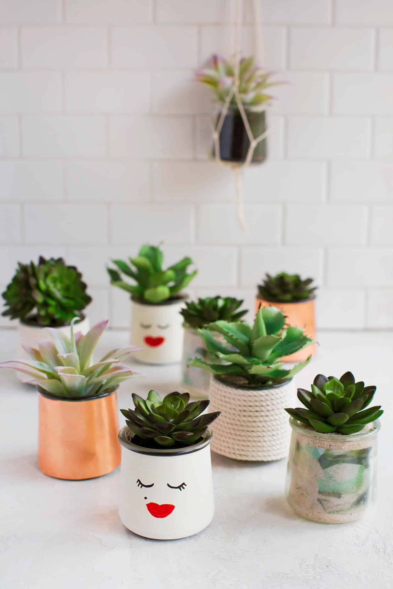 Succulent pot with recyclable materials