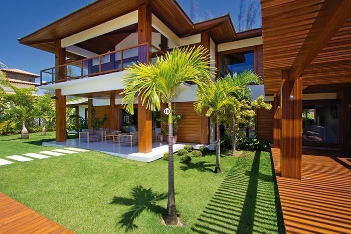 Palm tree outdoors