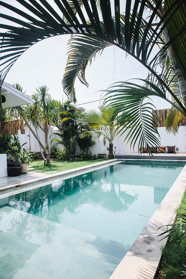 Even tall, the real palm trees do not take away the visibility of the house facade