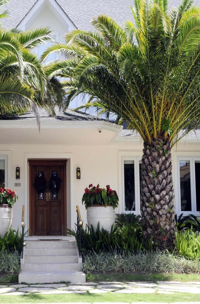Ornate house entrance with washingtonia palms