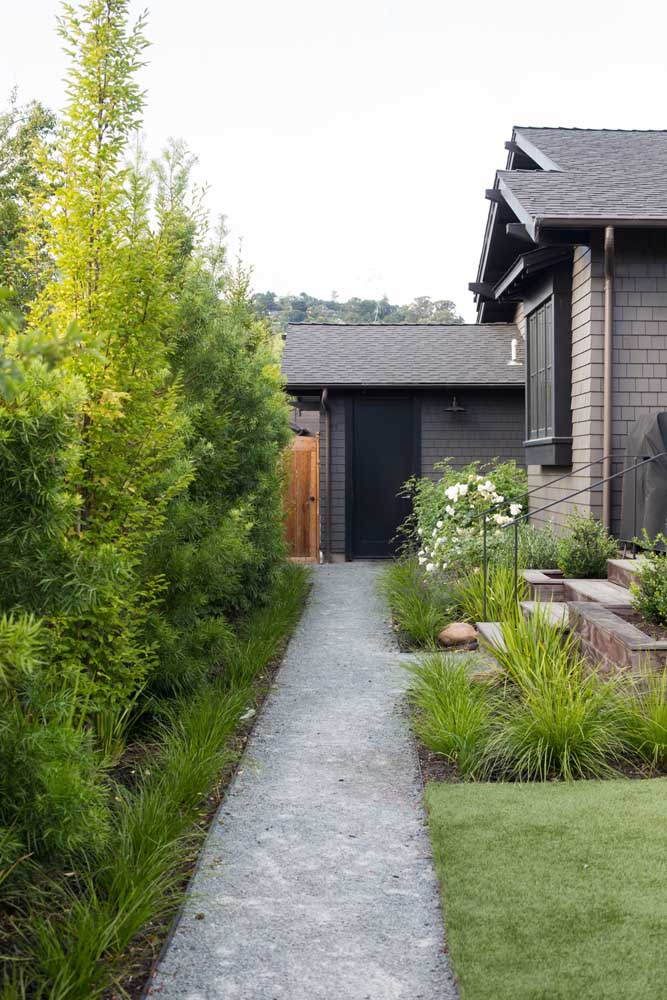 Garden with podocarp: rustic effect matching the house
