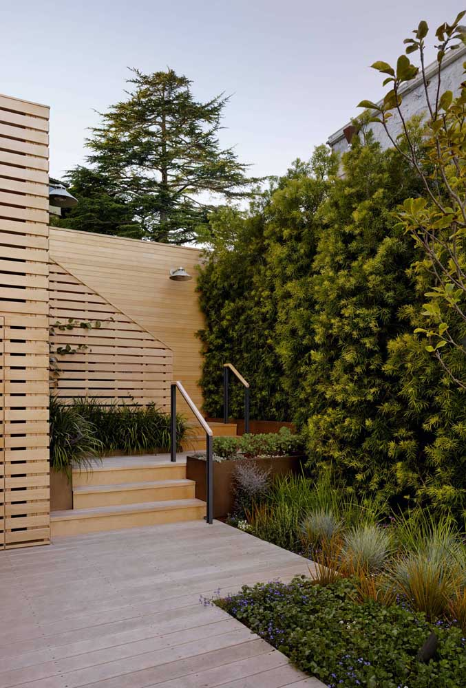Backyard with podocarpos close to the wall. A great option for small spaces