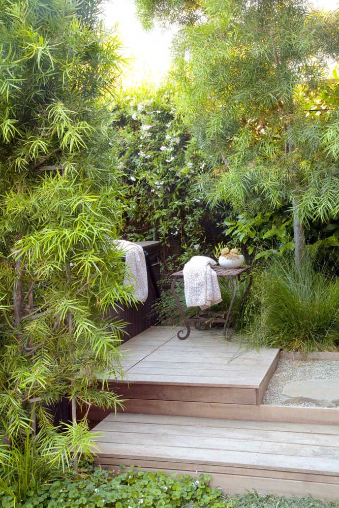 Together, podocarpos form a perfect green massif to bring more privacy to spaces, like here, next to the hot tub