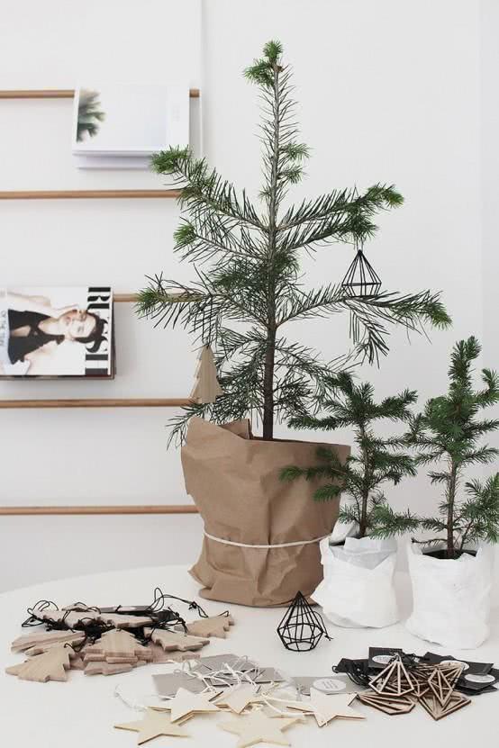 Utilize sua planta para montar uma árvore de Natal natural