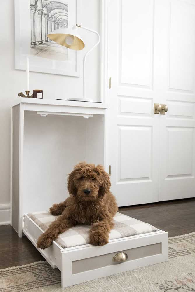 Casinha de cachorro que economiza espaço, uma ótima ideia!