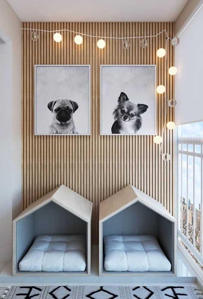 Uma casinha para cada pet: isso é importante, acredite!