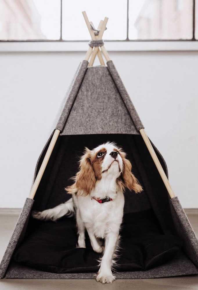 A casinha de cachorro de tecido é linda, mas só deve ser usada dentro de casa