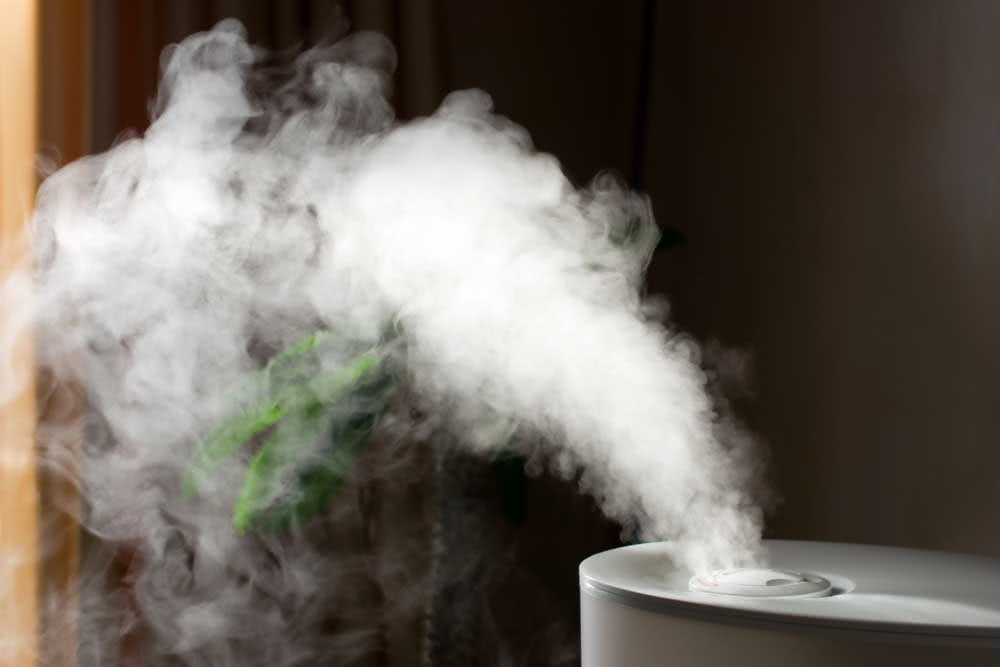 What is the air humidifier for