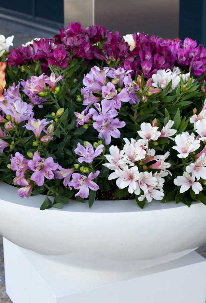 The more colorful, the better!  This vase of astromelia forms a beautiful color gradient