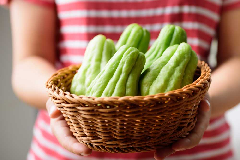 How to choose chayote