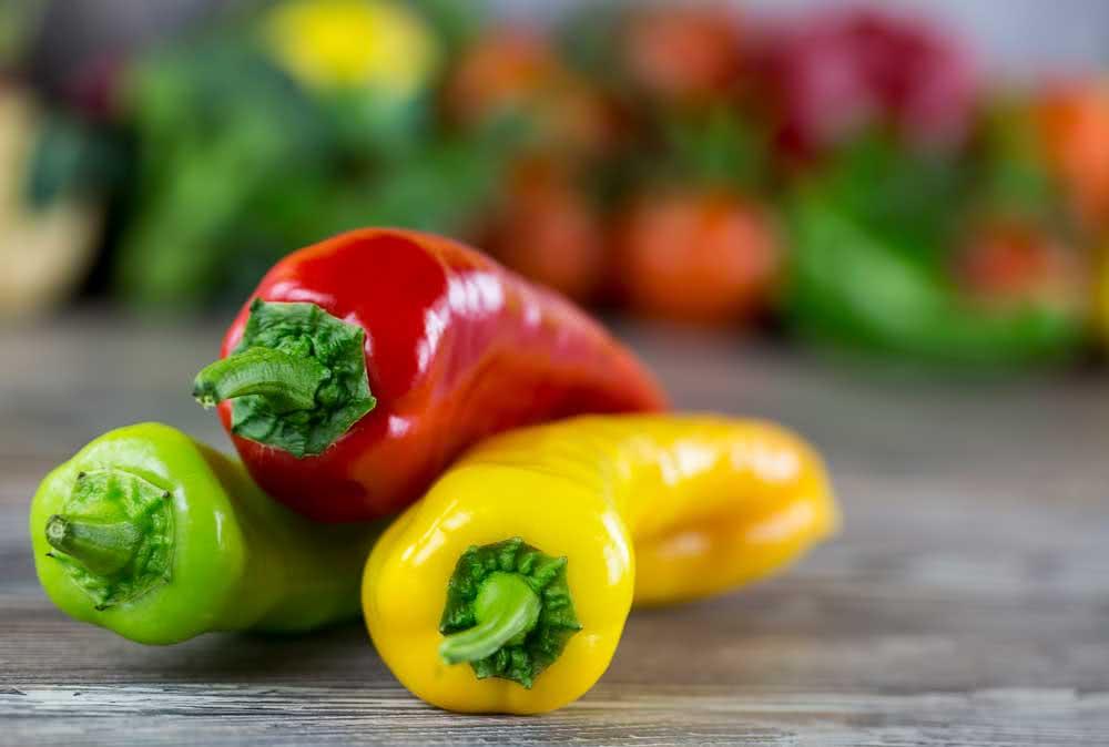 How to make chili seedlings