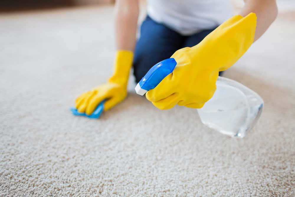 How to Wash Carpet: Different Techniques for Cleaning Carpets at Home